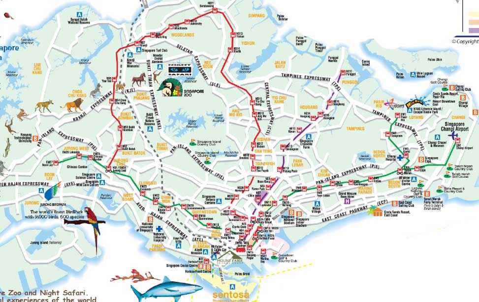 Detail Singapore Streets Map for Travelers Reference – Singapore Tourist Attractions Map